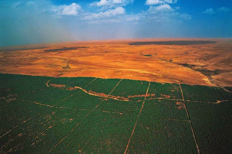 gran-muralla-verde-sahara