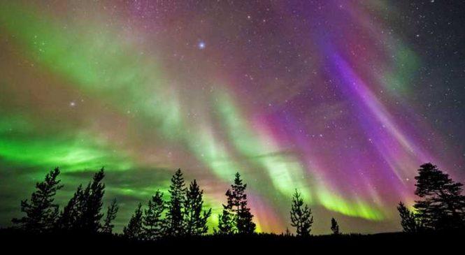 Disfruta de las auroras boleares