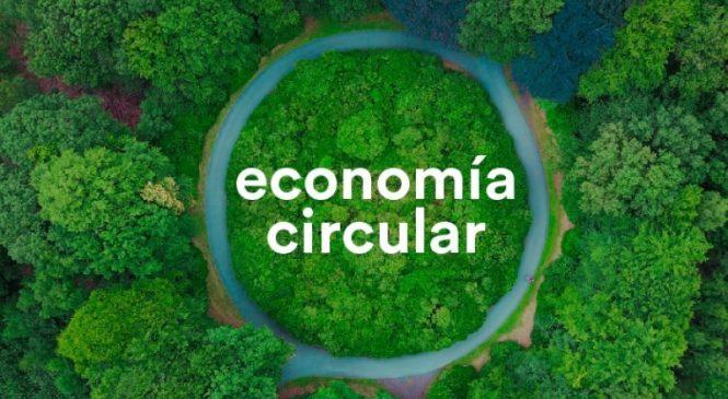 ¿Cuáles son los ejes del Desarrollo Sustentable?