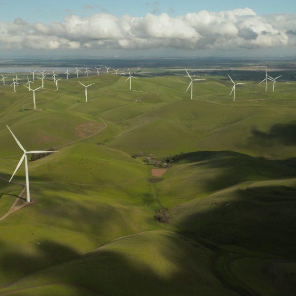 Lo que no sabías sobre las energías renovables
