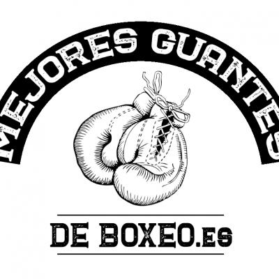 Que Guantes de Boxeo Necesitas